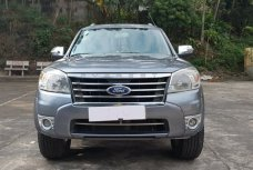 Xe Cũ Ford Everest 4x2 AT 2010 287034