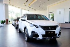 Xe Mới Peugeot 5008 AT 2018 289283