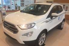 Xe Mới Ford EcoSport AT 2018 296381