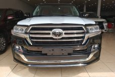 Xe Mới Toyota Land Cruiser Autobiography MBS 2019 308784
