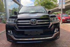 Xe Mới Toyota Land Cruiser VXS Autobiography MBS 2019 326355