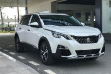 Xe Mới Peugeot 3008 ALL NEW 2019 331106