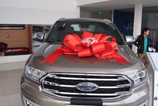 Xe Mới Ford Everest Titanium 2.0 4x4 AT 2019 333454