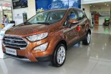 Xe Mới Ford EcoSport 1.0L Ecoboots 2020 333630