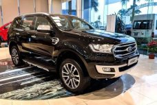 Xe Mới Ford Everest Ambient 4x2 AT 2020 334982