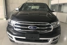 Xe Mới Ford Everest 2019 2019 335752